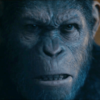 BingeCast: War for the Planet of the Apes, Better Call Binge, The Defiant Ones